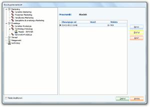 System Berberis ERP CRM BPM - formatka kosztów pracowniczych